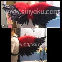 Red and Black wings by JunieNicole