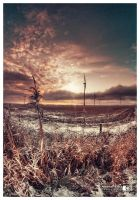 Winter Sunset by photoshoptalent