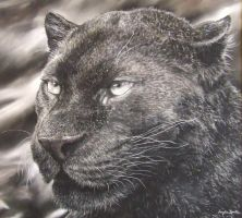 Panther (pastels) by AngelaMaySmith