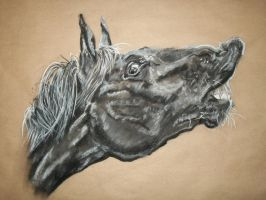 Horse Pastel B W 2 by naruto32