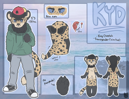 Kyd Ref by Currypit