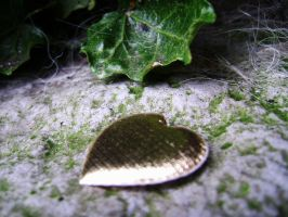 A heart waiting to be found by Chiptektastic