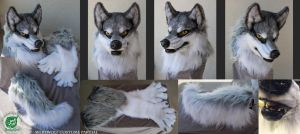 Cray - Werewolf Partial Fursuit by The-SixthLeafClover