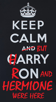 Keep calm and Potter on by MsOrderOfThePhoenix
