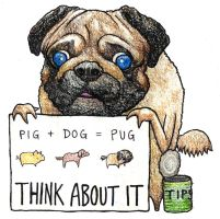 tip the pug by CAESCHEcartoons