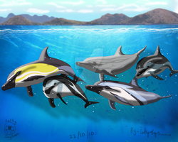 Dolphin Family-Verson 2 by Catbirdwoman