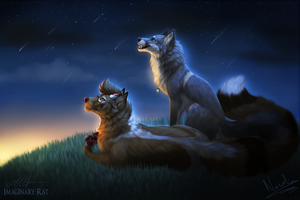 Under the Stars by Imaginary-Rat