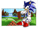 Sonic in Green Hill zone by adamis