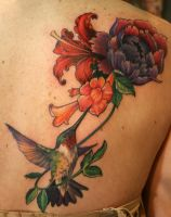 Hummingbird and Trumpet Vine by Phedre1985