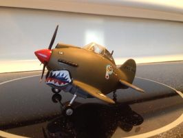 Eggplanes Curtiss P40 Warhawk by Jetster1