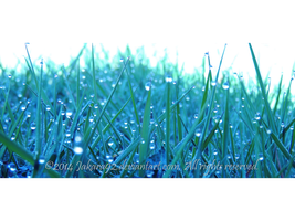 Waterdrop on grass VI by Jakara92