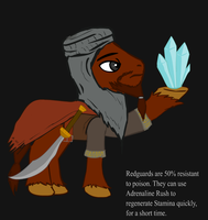 Ponified Skyrim loading screen: Redguard by glue123