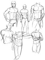 Anatomy torso sketch dumps by Vimes-DA