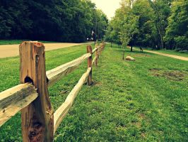 Follow the Yellow Wood Fence by soon2bMrsEvans