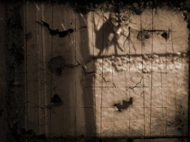 old spider by draconian