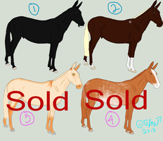 Mule Adoptables-Closed by ClineVanMark