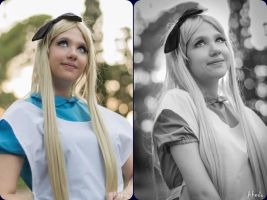 Alice in Wonderland: A Wonderfull Land by xxEtsuko