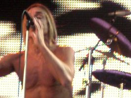 Iggy Pop 1 by FAshi0nAblii-LAt3