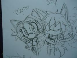Tsuko And Sky The Wolf by Pz-crew