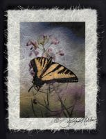 Butterfly on Rice Paper by ForeverCreative