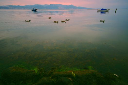 Waterscapes_II by falname-stock