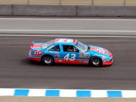 King o NASCAR Richard Petty 43 by Partywave
