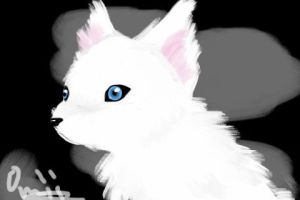 Itouch Wolf drawing by Midoromi
