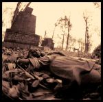 Fisheye Graveyard3 by Second-Harvest