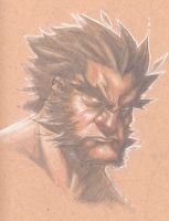 Wolverine on Brown Paper by MicahJGunnell