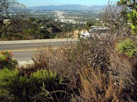 Mulholland Drive by makepictures