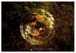 Soap-Bubble by Manveru