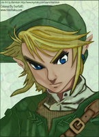 Link from Twilight Princess by SunfallE