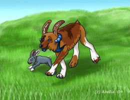 Rabbit Race by Abellia