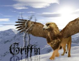 Griffin by Jenrocks4ever