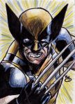 Wolverine (color pencil) by BluBoiArt