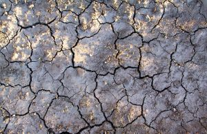 Cracked Mud 14 by Falln-Stock