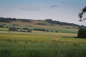 Meadow Pasture Landscape 8 by LuDa-Stock