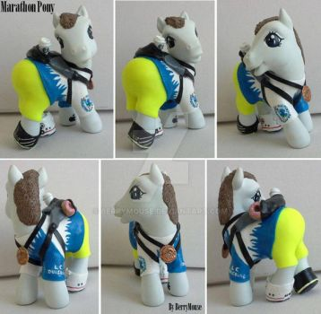My little Pony Custom G3 Marathon Pony (persona) by BerryMouse
