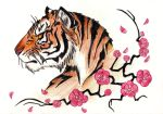 Tiger by Revie6661