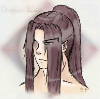 B'day Present - Feanor by AlaudeSketchbook
