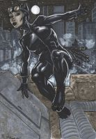 Catwoman by ErnestoFigueroa