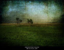 Argentine fields by ipawluk