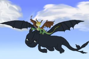 Commision- HTTYD by theneopetmaster