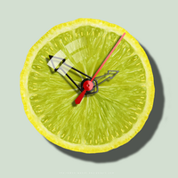 THE LEMON WATCH - ID by THE-LEMON-WATCH
