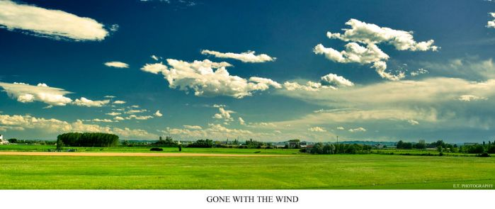 Gone with the Wind by aemilor