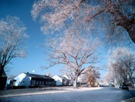 Stolpe Center infrared by MichiLauke