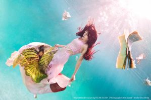 wonderland ii by CookmePancakes