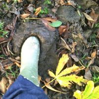 Foot in... by Refract