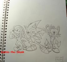 Team Sonic by Sophie-The-Skunk