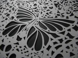 Close-up of Butterfly in Papercut by IgrenIllustration